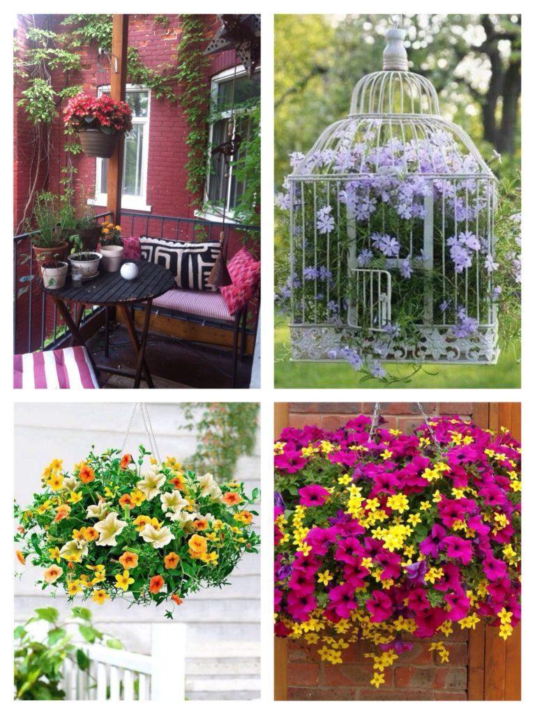подвесные цветы
