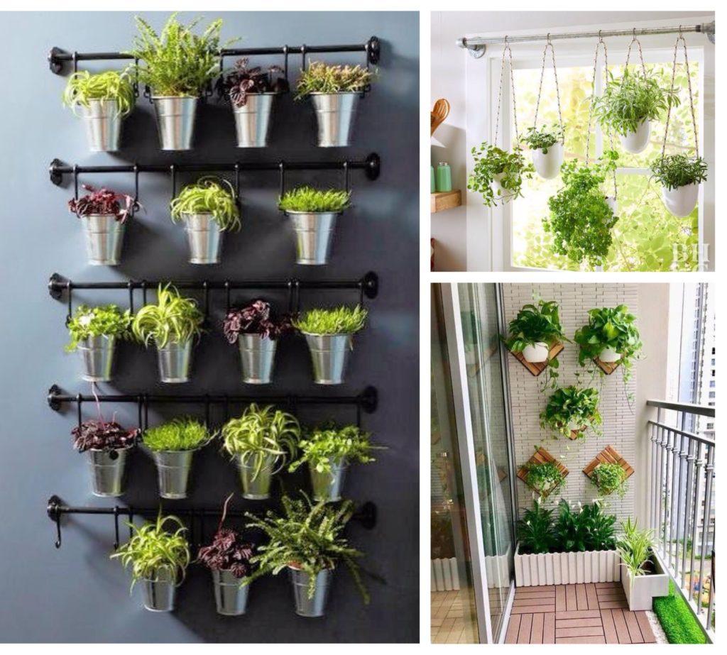 идеи крепления комнатных цветов