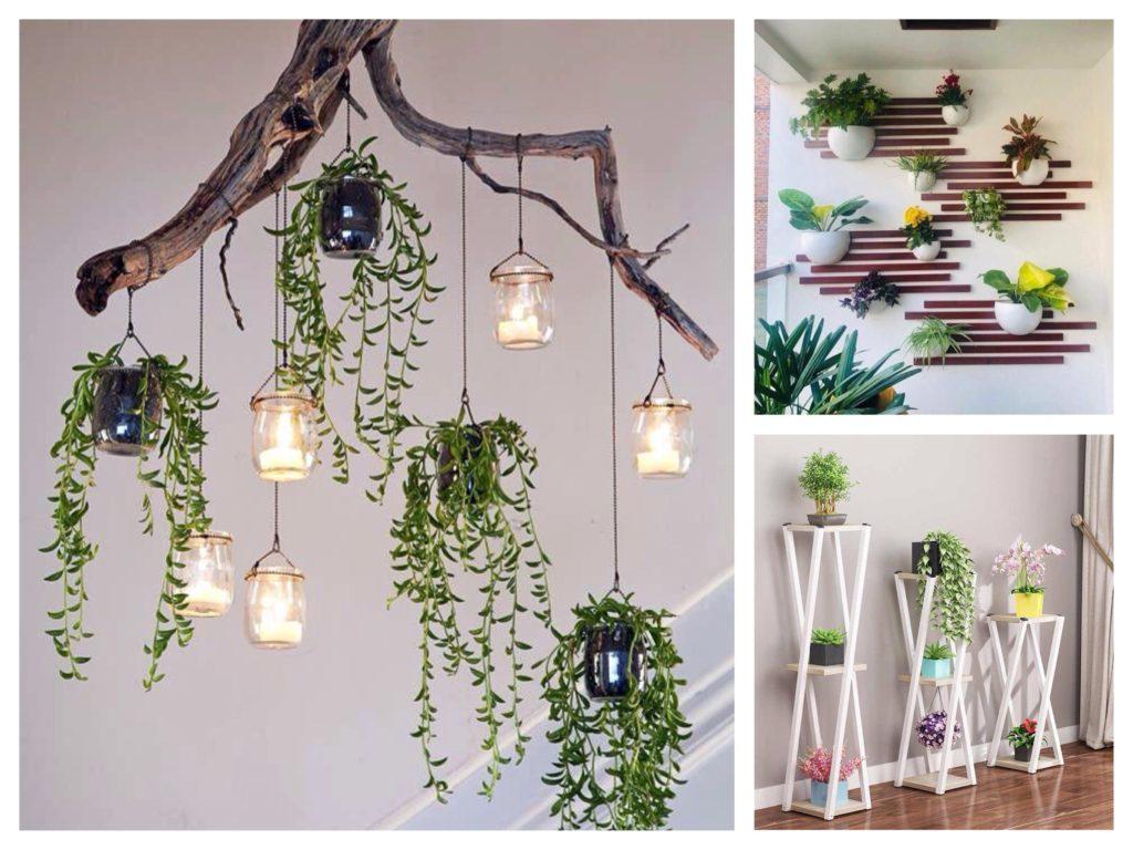 идеи полок для домашних цветов