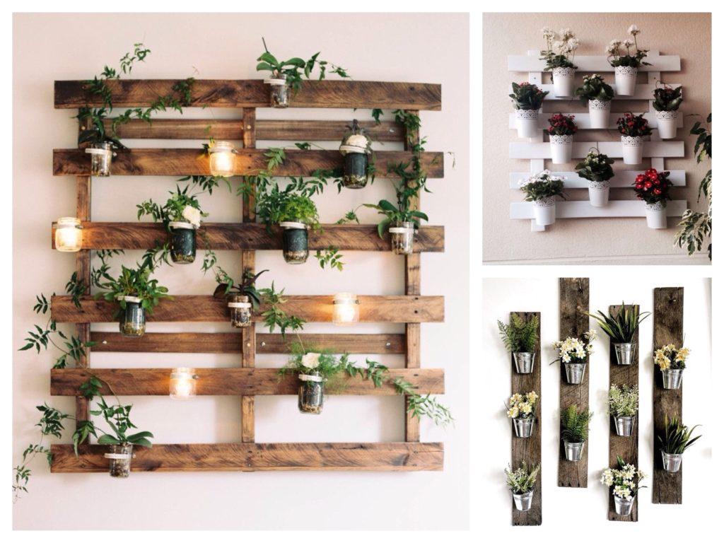 оформление зоны с домашними растениями фото