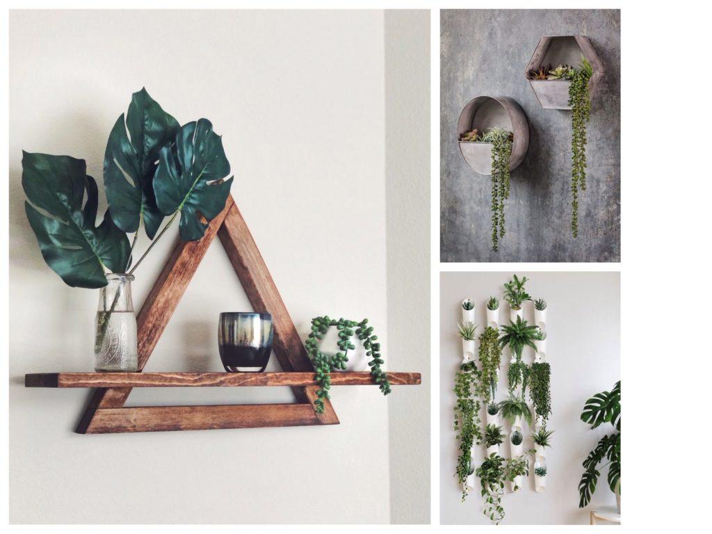варианты цветов в доме идеи